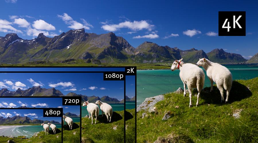Matrox M264 Multi-channel 4:2:2 10-bit H 264 Encoder Card for